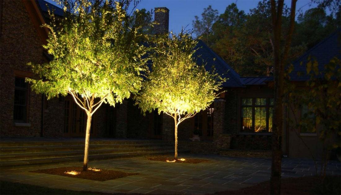 Освещение деревьев в ландшафтном дизайне
